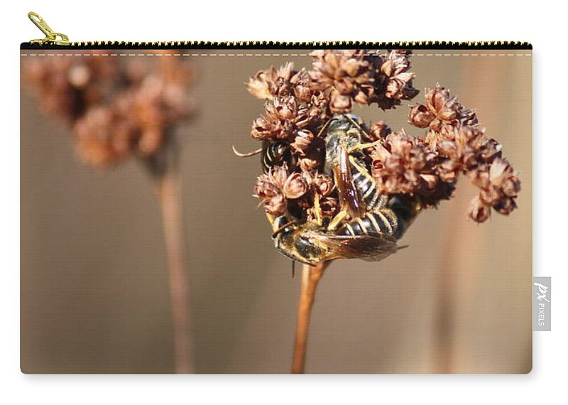Bees Carry-all Pouch featuring the photograph How Bees Keep Warm by Carol Groenen