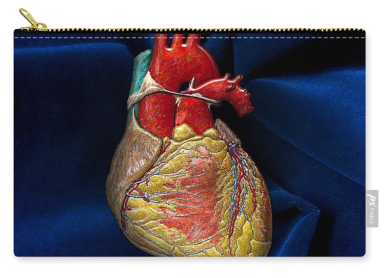 'inner Workings 3d' Collection By Serge Averbukh Carry-all Pouch featuring the photograph Human Heart Over Blue Velvet by Serge Averbukh
