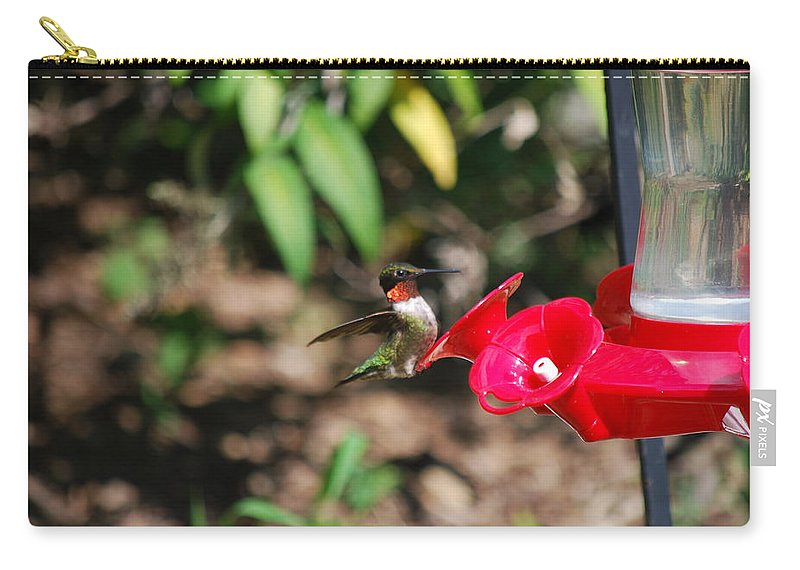 Hummingbird Carry-all Pouch featuring the photograph Hummer by Lori Tambakis