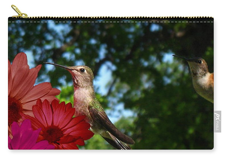 Bird Carry-all Pouch featuring the photograph Hummers And Colored Daisies by Joyce Dickens