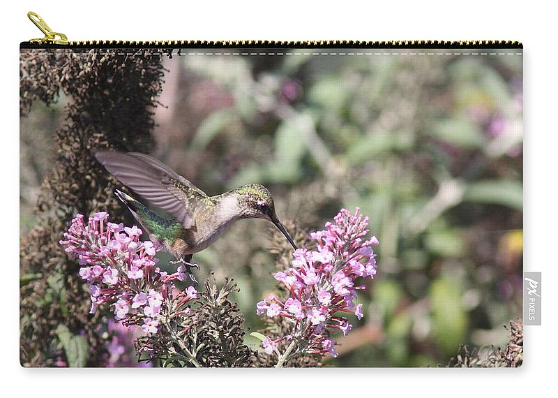 Hummingbird Carry-all Pouch featuring the photograph Hummingbird - Feeding Little Ruby by Travis Truelove