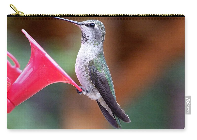 Green Carry-all Pouch featuring the photograph Hummingbird 1 by Mary Deal