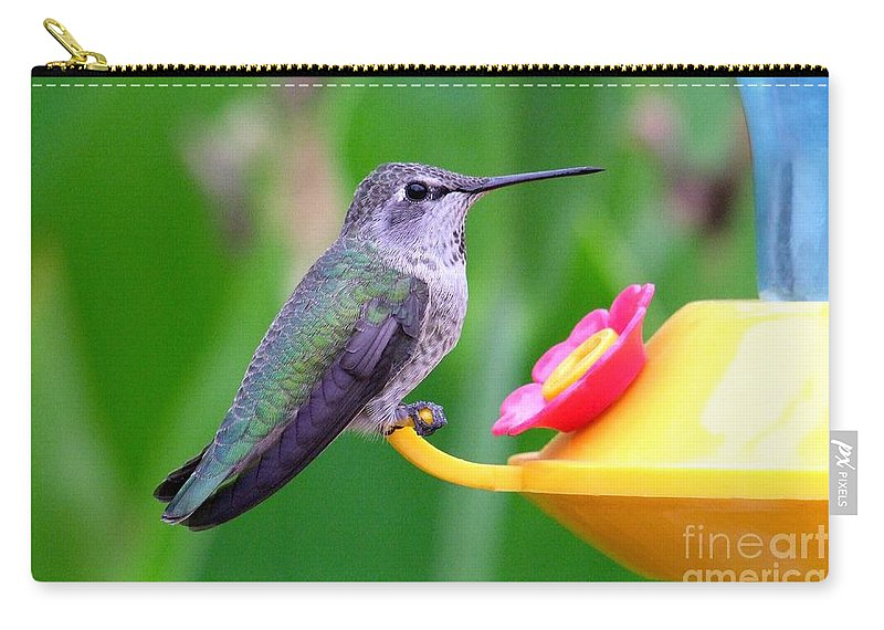 Green Carry-all Pouch featuring the photograph Hummingbird 32 by Mary Deal