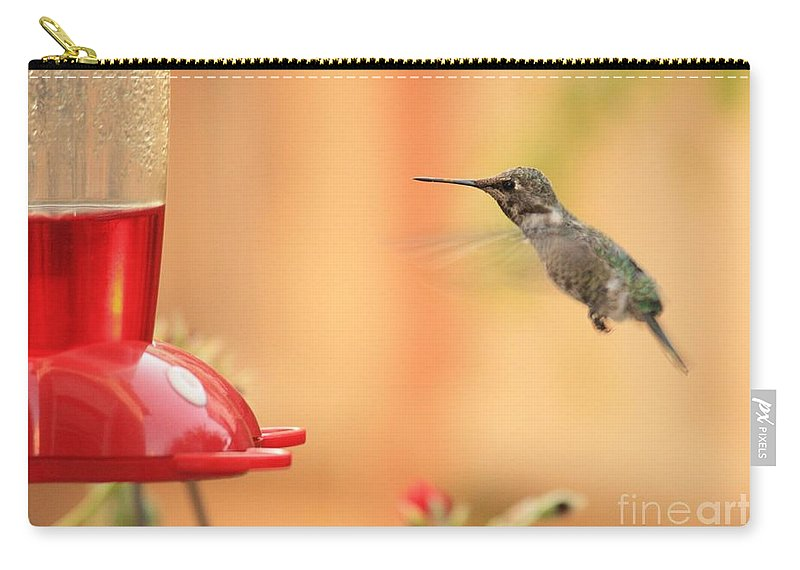Hummingbird Carry-all Pouch featuring the photograph Hummingbird And Feeder by Carol Groenen