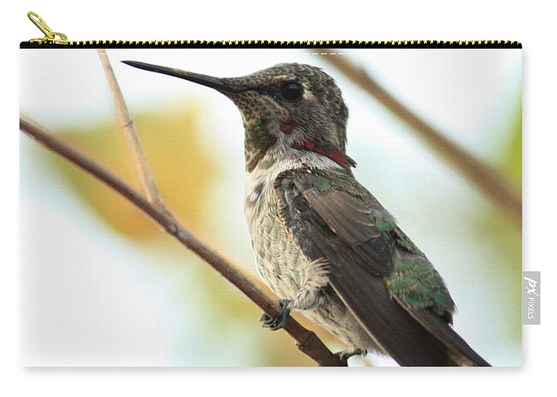 Hummingbird Carry-all Pouch featuring the photograph Hummingbird Between Branches by Carol Groenen