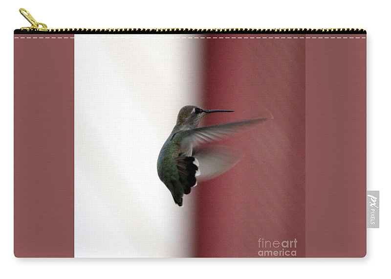 Hummingbird Carry-all Pouch featuring the photograph Hummingbird Changing Course by Carol Groenen
