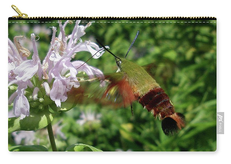 Moth Carry-all Pouch featuring the photograph Hummingbird Clear-wing Moth At Monarda by Mother Nature