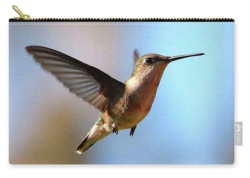 Hummingbird Carry-all Pouch featuring the photograph Hummingbird Friend by Carol Groenen
