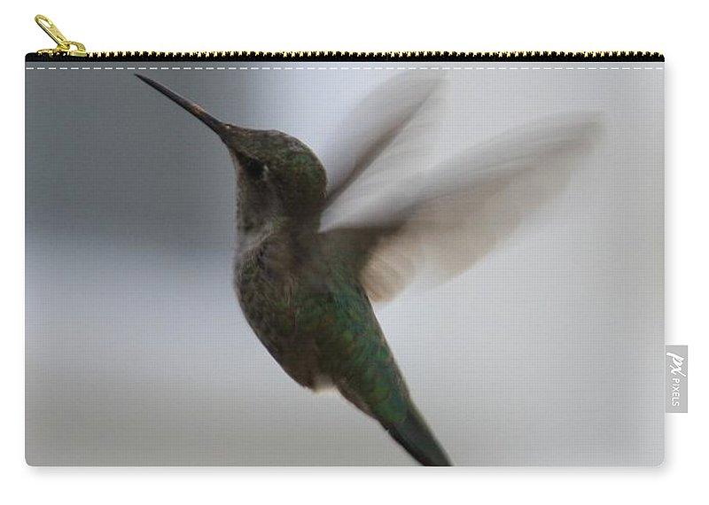 Hummingbird Carry-all Pouch featuring the photograph Hummingbird In Flight by Carol Groenen