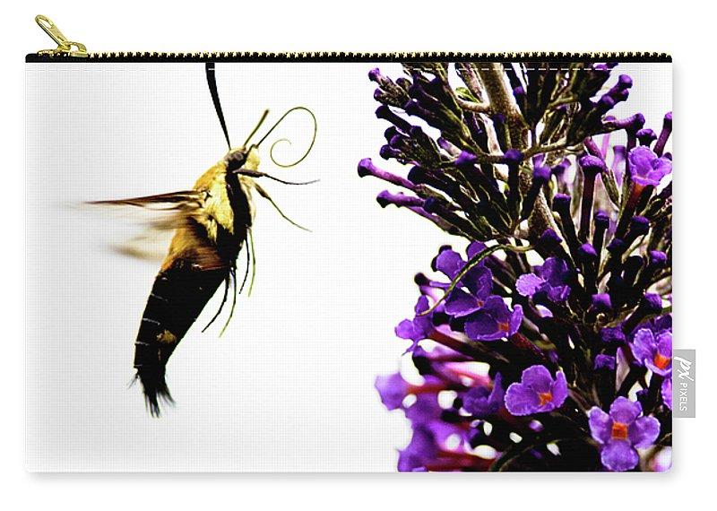 Hummingbird Moth Carry-all Pouch featuring the photograph Hummingbird Moth by Julie Niemela