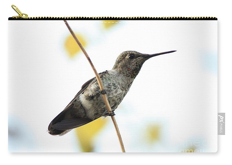 Hummingbird Carry-all Pouch featuring the photograph Hummingbird On Tightrope by Carol Groenen