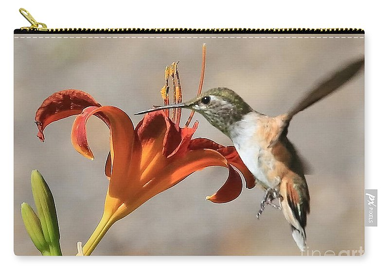 Hummingbird Carry-all Pouch featuring the photograph Hummingbird Whisper by Carol Groenen