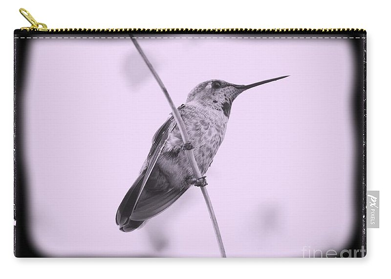 Hummingbird Carry-all Pouch featuring the photograph Hummingbird With Old-fashioned Frame 4 by Carol Groenen