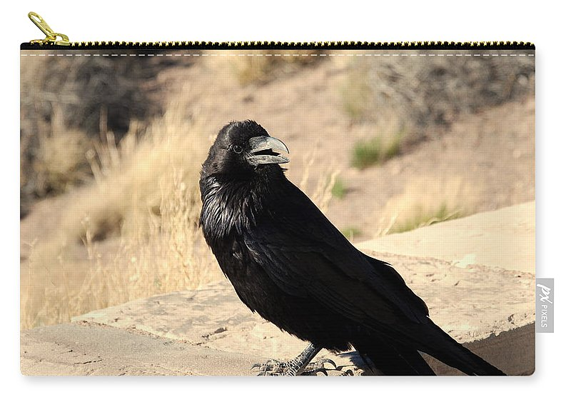 Crow Carry-all Pouch featuring the photograph Hungry Crow by Susanne Van Hulst