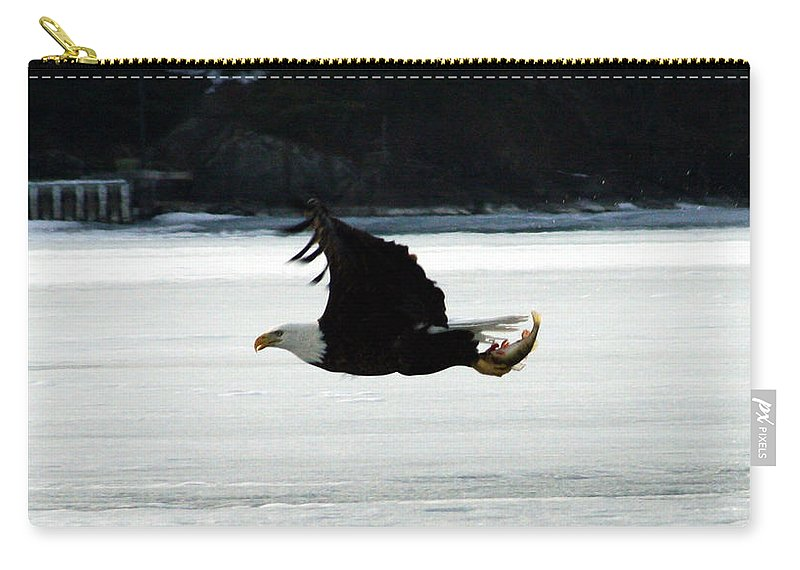 American Eagle Bird Flying Wings Fish Nature Wild Animal Carry-all Pouch featuring the photograph Hungry Eagle by Andrea Lawrence