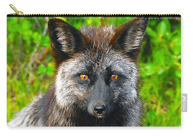 Gray Fox Carry-all Pouch featuring the photograph Hungry Eyes by David Lee Thompson