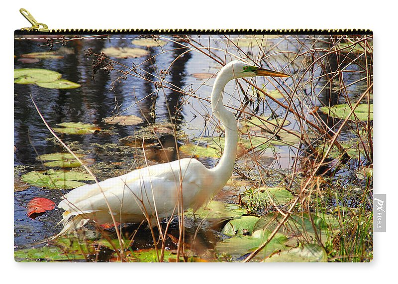 Photography Carry-all Pouch featuring the photograph Hunting For Food by Susanne Van Hulst