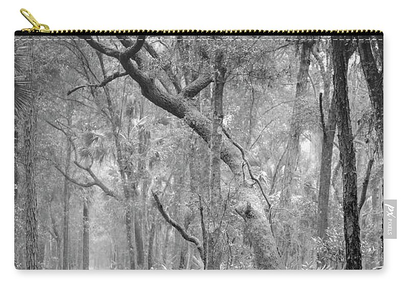 Canvas Carry-all Pouch featuring the photograph Hunting Island Path by Phill Doherty