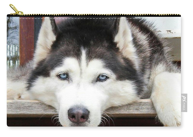 Dog Carry-all Pouch featuring the photograph Husky Eyes by Eric Fellegy