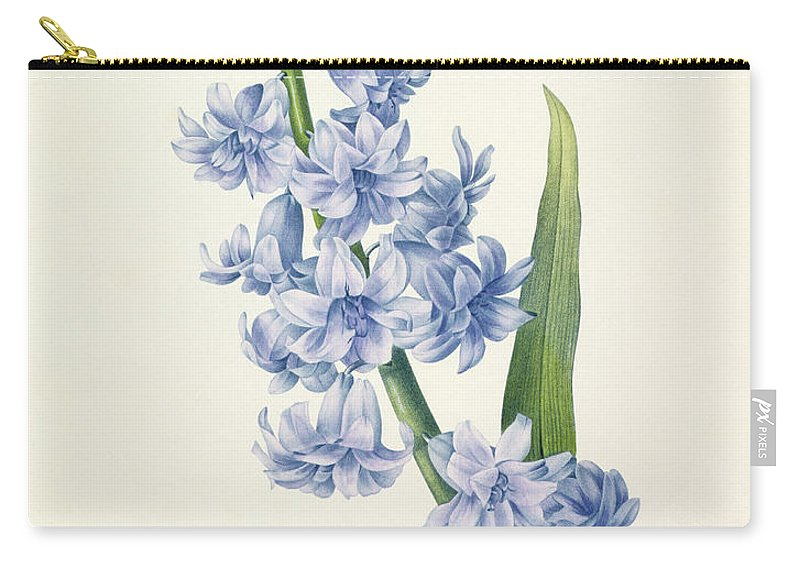 Hyacinthus Carry-all Pouch featuring the drawing Hyacinth by Pierre Joseph Redoute