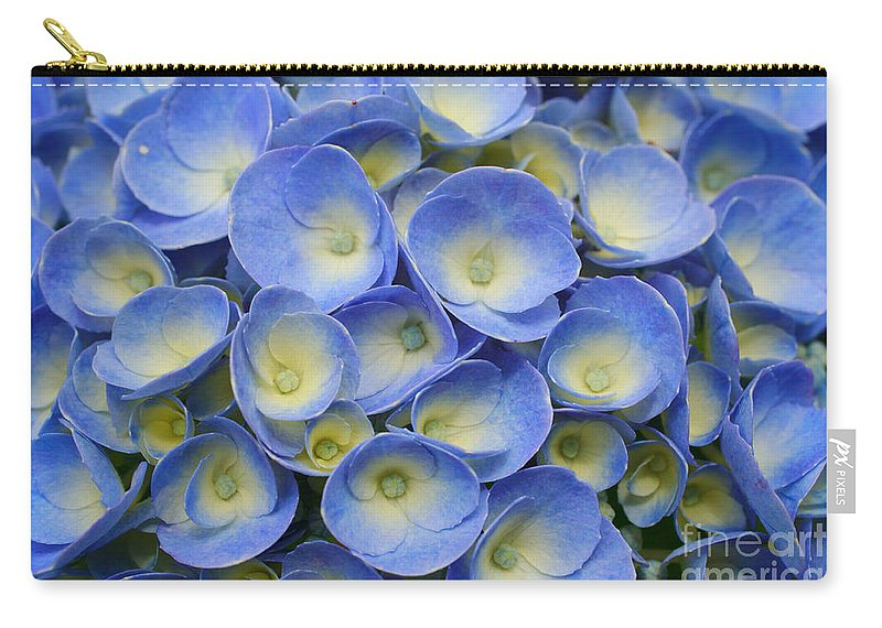 Flora Carry-all Pouch featuring the photograph Hydrangea Closeup by Gaspar Avila