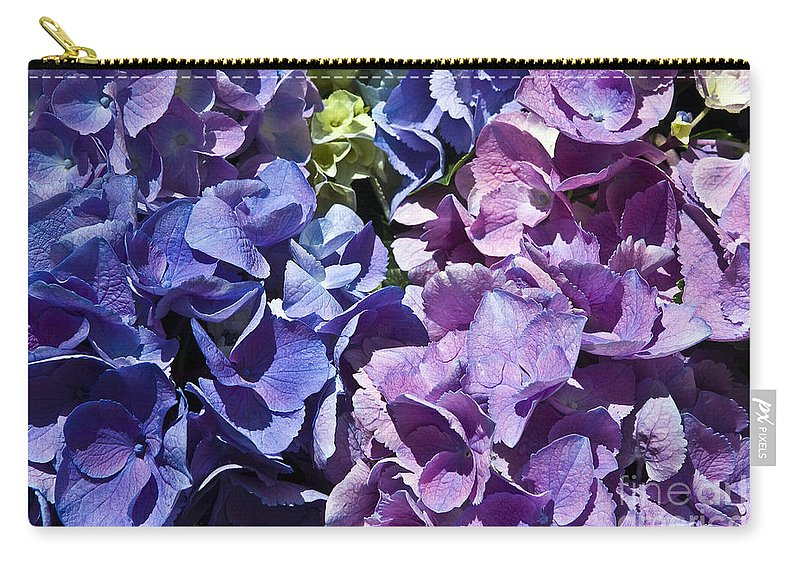 Hydrangea Carry-all Pouch featuring the photograph Hydrangea by Tim Hightower