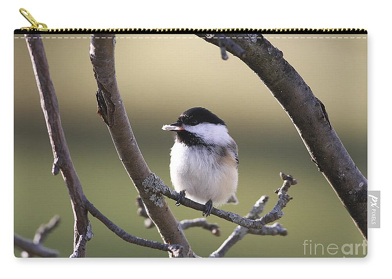 Bird Carry-all Pouch featuring the photograph I Finally Got It by Deborah Benoit