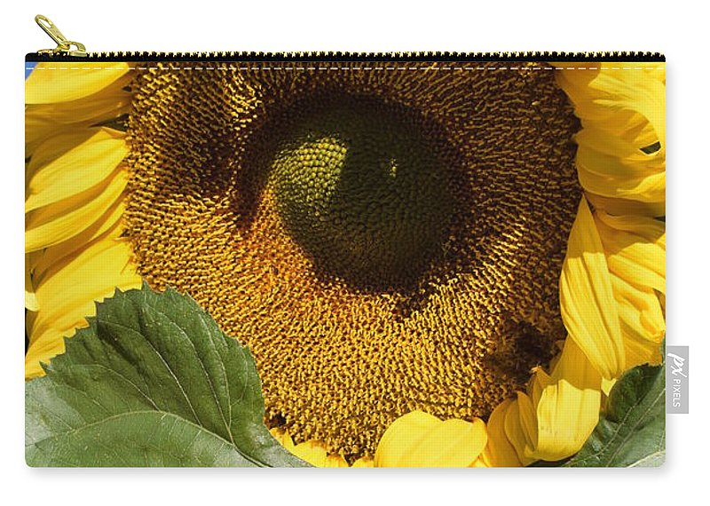 Sunflower Carry-all Pouch featuring the photograph I Got An Eye On You by Jimmy Chuck Smith