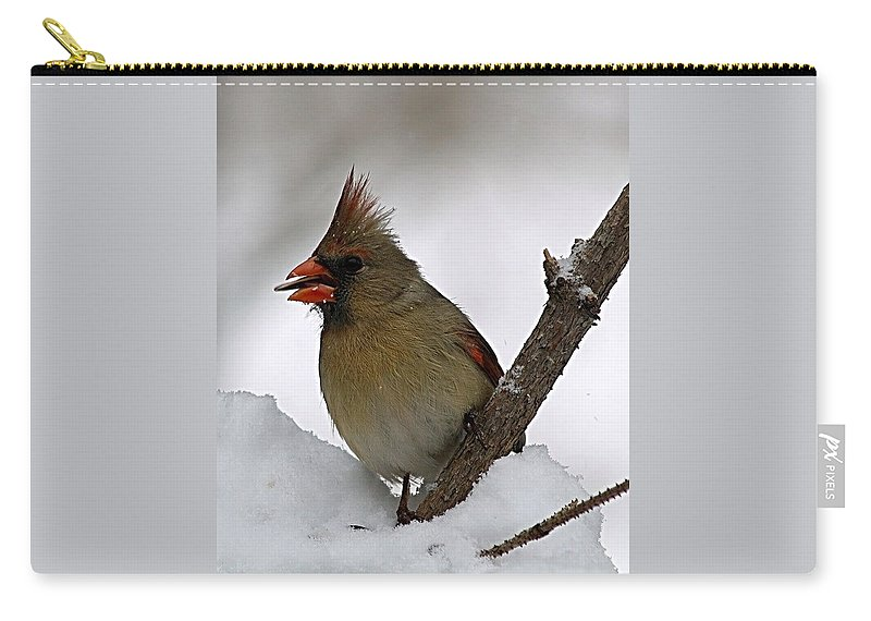 Bird Carry-all Pouch featuring the photograph I love seeds by Gaby Swanson