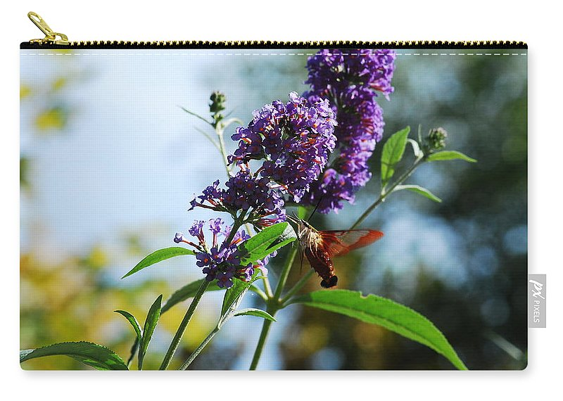 Moth Carry-all Pouch featuring the photograph I Love The Purple Ones by Lori Tambakis