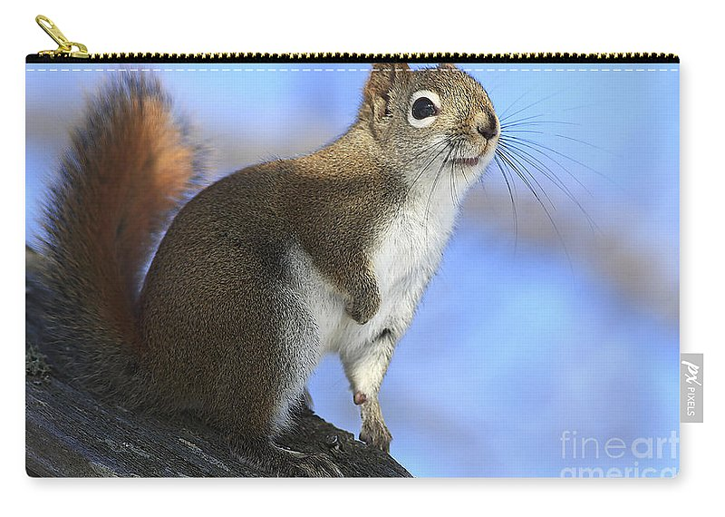 Animal Carry-all Pouch featuring the photograph I See Sun by Deborah Benoit