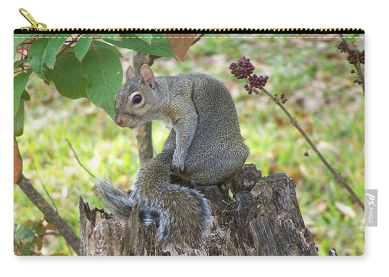Nature Carry-all Pouch featuring the photograph I Should Have Used... by Peg Urban