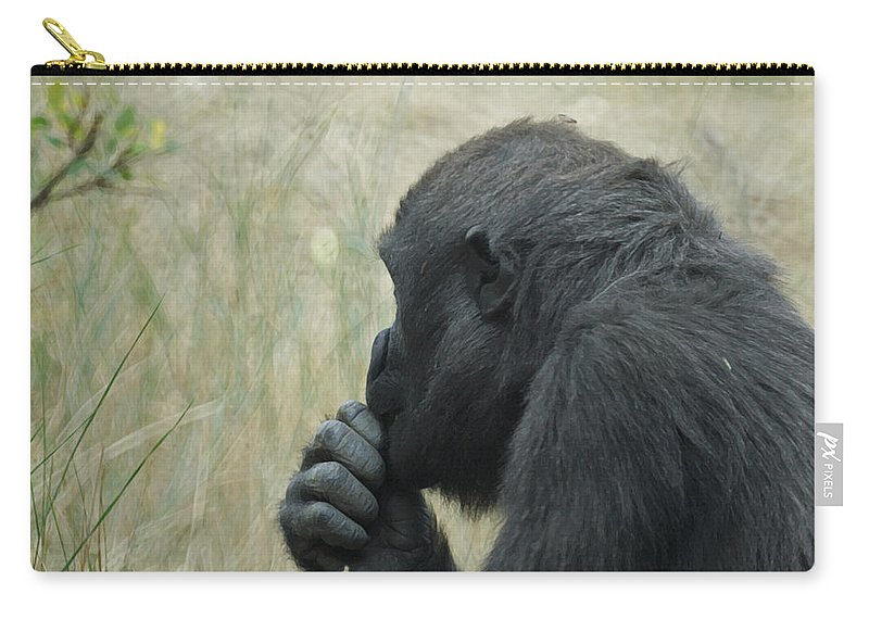 Animals Carry-all Pouch featuring the photograph I Wonder by Ernie Echols