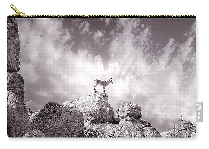Ibex Carry-all Pouch featuring the photograph Ibex -the Wild Mountain Goats In The El Torcal Mountains Spain by Mal Bray