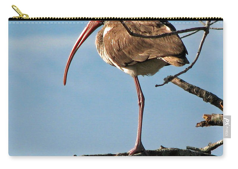Nature Carry-all Pouch featuring the photograph Ibis At Rest by Peg Urban