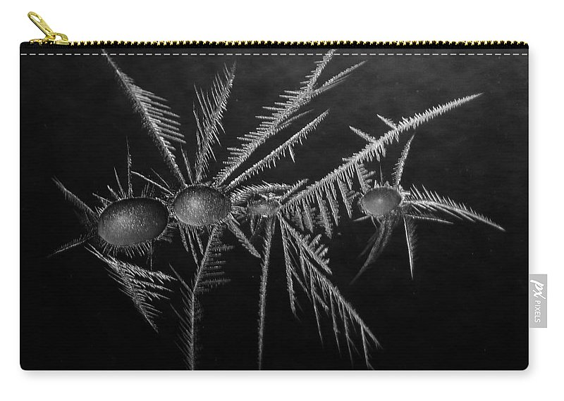 Winter Carry-all Pouch featuring the photograph Ice Crystals ... by Juergen Weiss