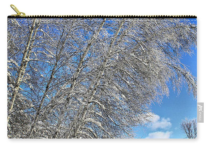 Snow Carry-all Pouch featuring the photograph Ice Laden Birches by Deborah Benoit