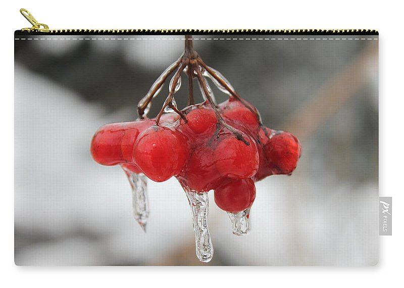 Ice Carry-all Pouch featuring the photograph Ice Wrapped Berries by Lauri Novak