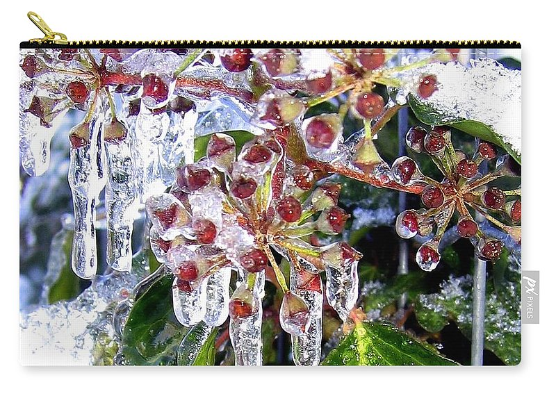 Iced Ivy Carry-all Pouch featuring the photograph Iced Ivy by Will Borden