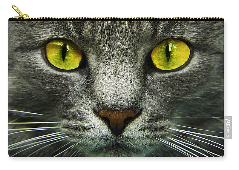Cats Carry-all Pouch featuring the photograph I.c.u. by Joachim G Pinkawa