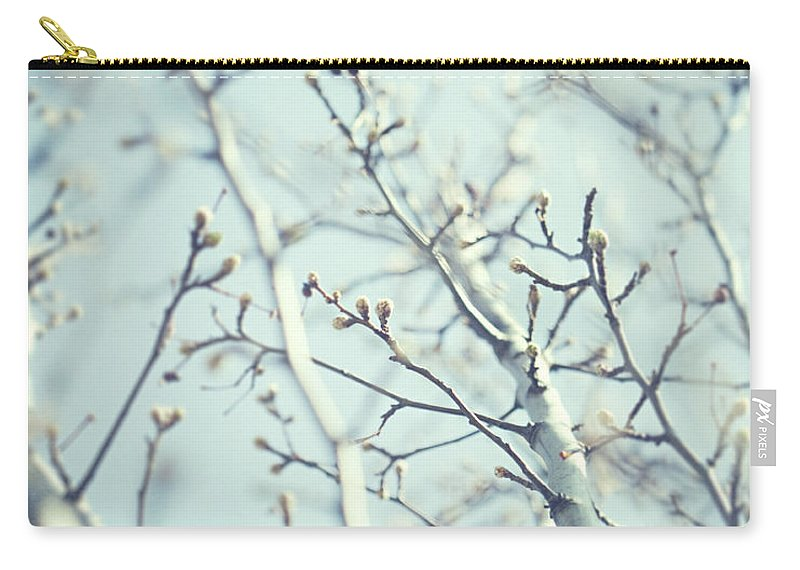 Nature Carry-all Pouch featuring the photograph Illume by Lisa Russo