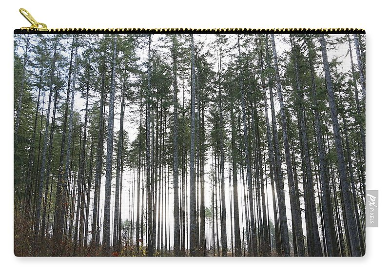 Trees Carry-all Pouch featuring the photograph Illumination by Dani Keating