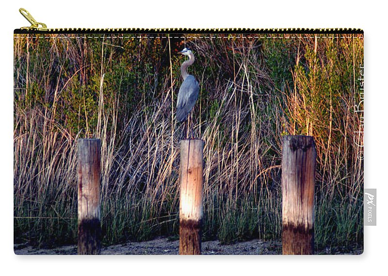 Clay Carry-all Pouch featuring the photograph Illusion by Clayton Bruster