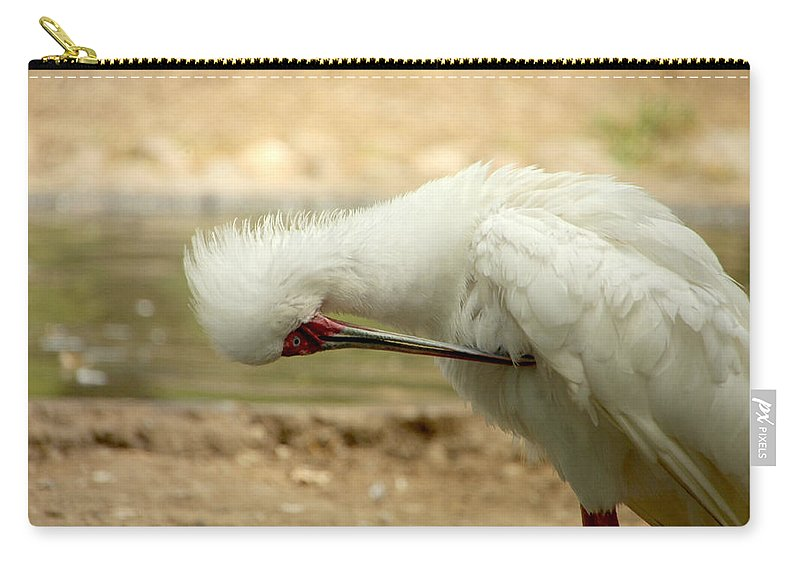 Bird Carry-all Pouch featuring the photograph I'm So Ashamed by Donna Blackhall