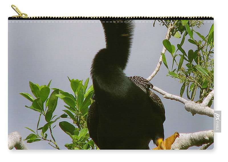 Bird Carry-all Pouch featuring the photograph I'm So Sexy by Peg Urban