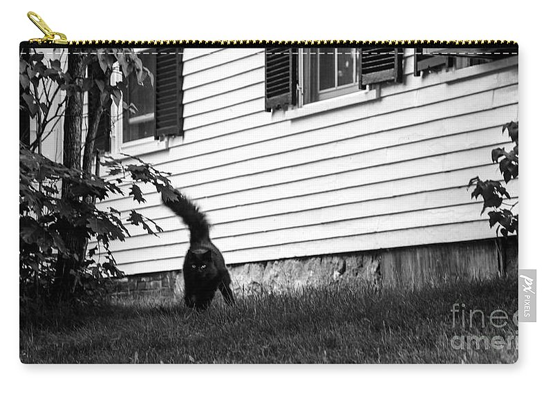 Cat Carry-all Pouch featuring the photograph I'm Watching You Black And White by Marina McLain