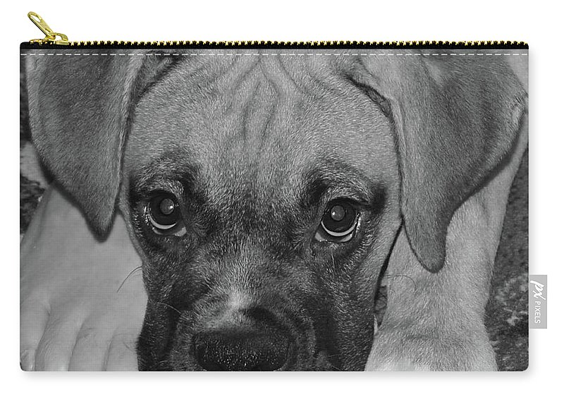 Boxer Carry-all Pouch featuring the digital art Impawsible by DigiArt Diaries by Vicky B Fuller