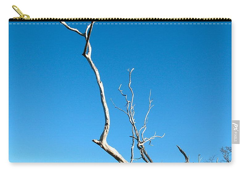 Implore Carry-all Pouch featuring the photograph Implore by Corinne Rhode