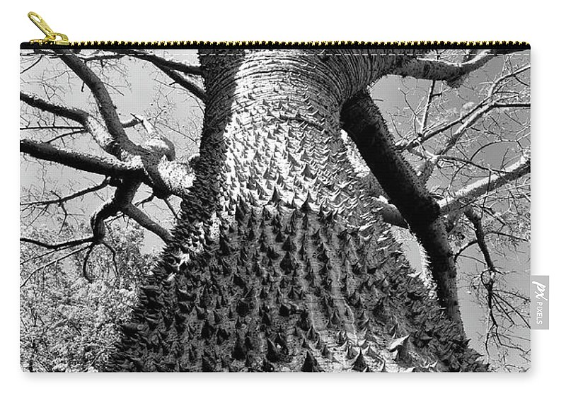 Fine Art Photography Carry-all Pouch featuring the photograph Impressive by David Lee Thompson