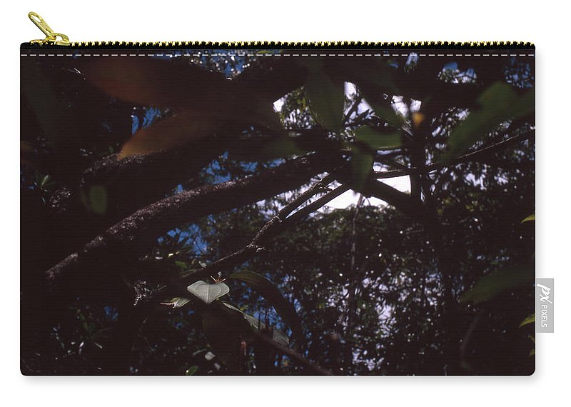 Bahia Carry-all Pouch featuring the photograph In A Brazilian Forest by Patrick Klauss